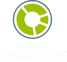 PolyWorks | Report Loop™